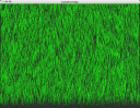 grass01wk5.png