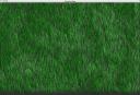 wk6grassscreenshot_1.png